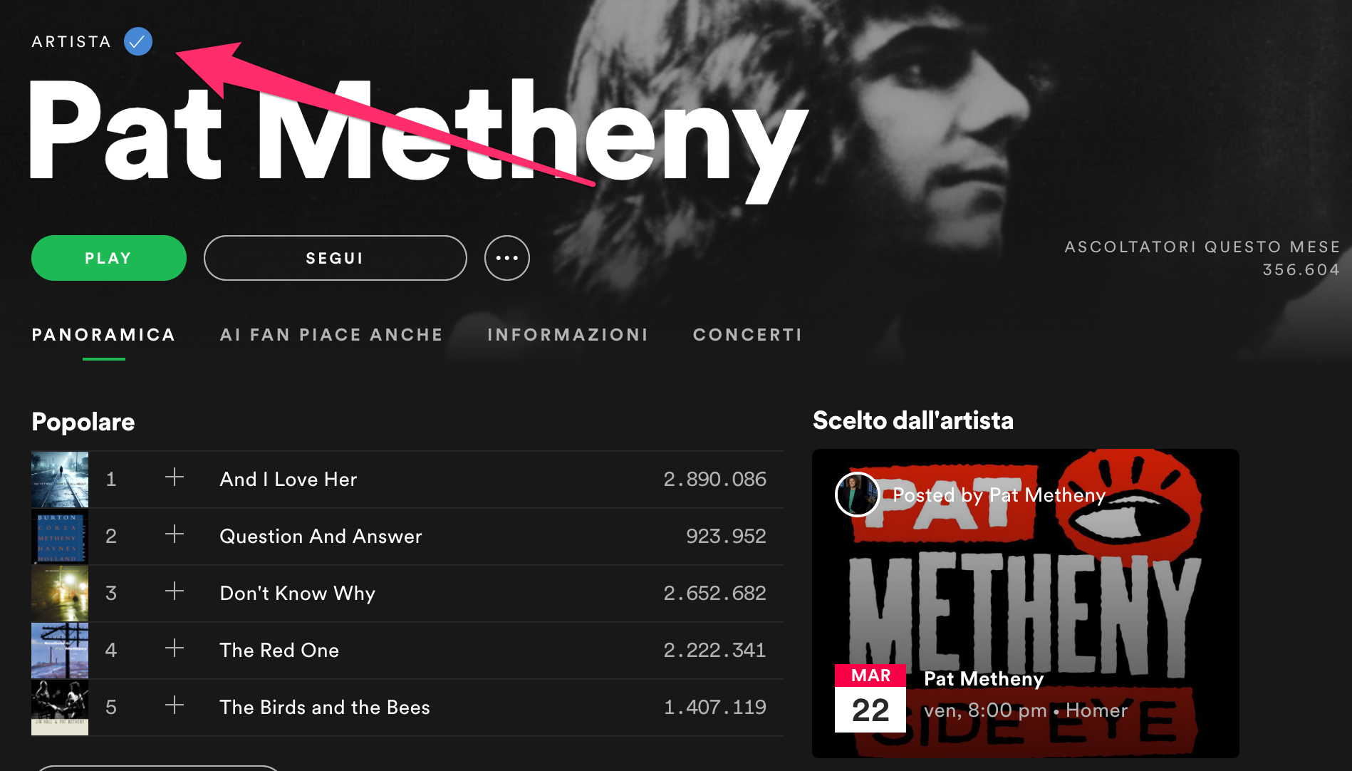 Come Promuovere Musica Su Spotify - Spotify for Artists - Pat